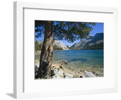 Shore of Tenaya Lake-Marc Moritsch-Framed Photographic Print