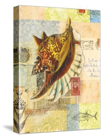 Vintage Botanical Seashell Print-Bessie Pease Gutmann-Stretched Canvas Print