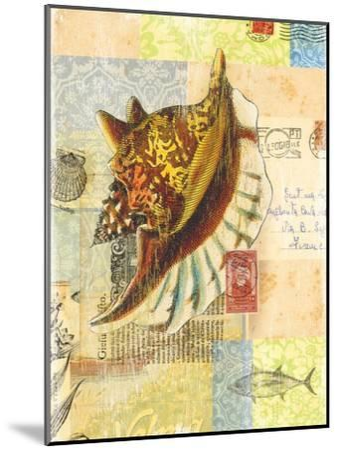 Vintage Botanical Seashell Print-Bessie Pease Gutmann-Mounted Giclee Print