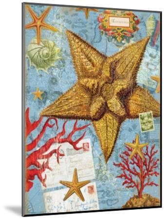 Vintage Botanical Starfish Print-Bessie Pease Gutmann-Mounted Giclee Print