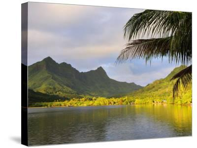 Faaroa Bay and Mount Oropiro, Raiatea, French Polynesia, South Pacific Ocean, Pacific-Jochen Schlenker-Stretched Canvas Print