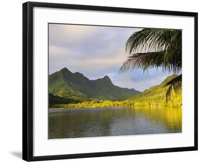 Faaroa Bay and Mount Oropiro, Raiatea, French Polynesia, South Pacific Ocean, Pacific-Jochen Schlenker-Framed Photographic Print