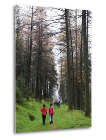 Hikers Walking in Brecon Beacons National Park, South Wales, Uninted Kingdom, Europe-Christian Kober-Metal Print