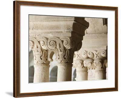 Capitals in Cloister of Notre-Dame De Senanque Abbey, Gordes, Vaucluse, Provence, France-Godong-Framed Photographic Print