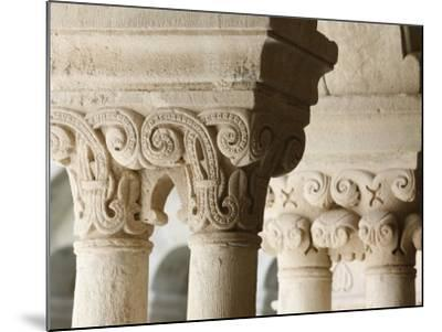 Capitals in Cloister of Notre-Dame De Senanque Abbey, Gordes, Vaucluse, Provence, France-Godong-Mounted Photographic Print