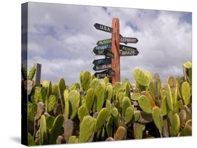 Signpost Standing Among Cactuses, Barbados, West Indies, Caribbean, Central America-Michael Runkel-Stretched Canvas Print