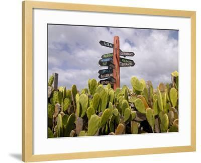 Signpost Standing Among Cactuses, Barbados, West Indies, Caribbean, Central America-Michael Runkel-Framed Photographic Print