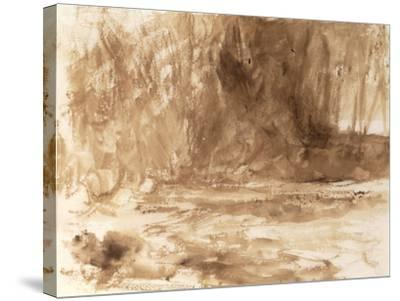 Study of the River Washburn, Yorkshire, c.1815-J^ M^ W^ Turner-Stretched Canvas Print
