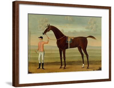A Bay Racehorse with his Jockey on a Racecourse-Daniel Quigley-Framed Giclee Print