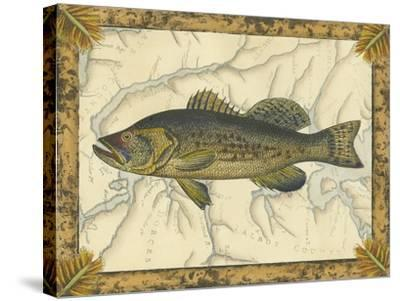 Black Bass on Map--Stretched Canvas Print