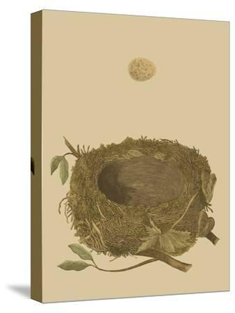 Antique Nest and Egg I-Reverend Francis O^ Morris-Stretched Canvas Print