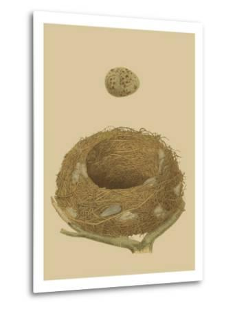 Antique Nest and Egg IV-Reverend Francis O^ Morris-Metal Print