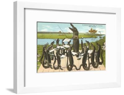 Alligator Chorus in New Orleans, Louisiana--Framed Art Print