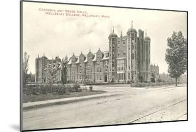 Cazenove and Beebe Halls, Wellesley College, Wellesley, Mass.--Mounted Art Print