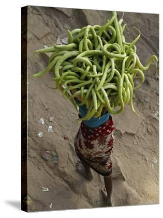 Indian Farmer Carries Cucumbers to Sell in the Market on the Outskirts of Allahabad, India--Stretched Canvas Print