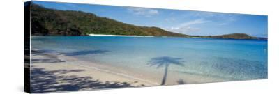 Shadow of Trees on Beach, Hawksnest Bay, Virgin Islands National Park, St. John, Us Virgin Islands--Stretched Canvas Print