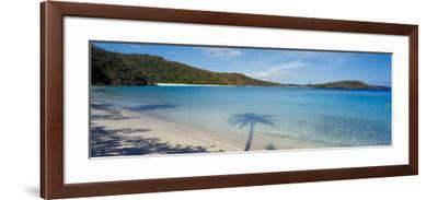 Shadow of Trees on Beach, Hawksnest Bay, Virgin Islands National Park, St. John, Us Virgin Islands--Framed Photographic Print