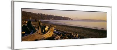 Driftwood on the Beach, Discovery Park, Mt Rainier, Seattle, King County, Washington State, USA--Framed Photographic Print