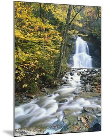 Moss Glen Falls in Autumn, Granvillie, Vermont, USA-Adam Jones-Mounted Photographic Print