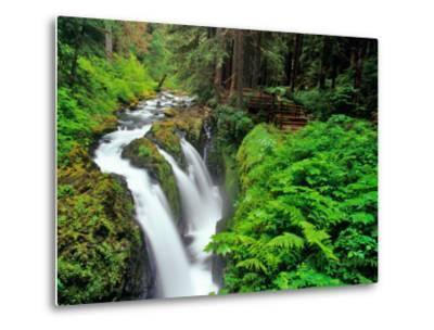 Sol Duc Falls in Olympic National Park, Washington, USA-Chuck Haney-Metal Print
