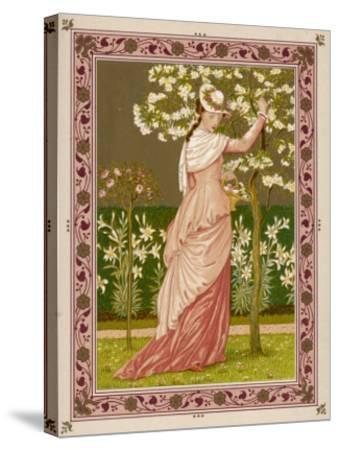 Cherry Ripe: a Pretty Lady in a Pink Dress Stands in Front of a Tree Full of Blossom--Stretched Canvas Print
