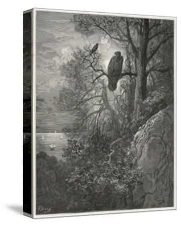 Eagle and Magpie--Stretched Canvas Print