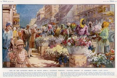 Flower Sellers - Cape Town, South Africa--Stretched Canvas Print
