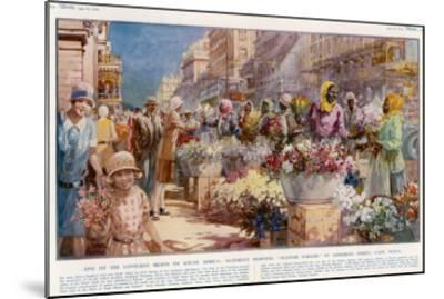 Flower Sellers - Cape Town, South Africa--Mounted Giclee Print