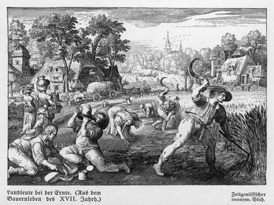 Harvest Scene in 17th Century Germany--Stretched Canvas Print