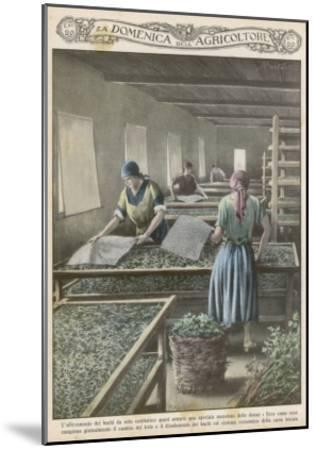 The Cultivation of Silk Worms in Italy--Mounted Giclee Print