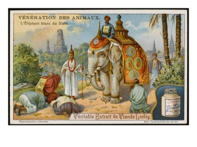The White Elephant Is Sacred in Siam/Thailand--Framed Giclee Print