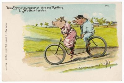 Two Happy Pigs Out for a Ride on their Tandem Bicycle--Stretched Canvas Print