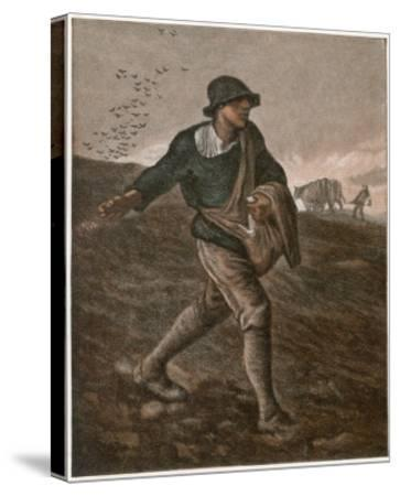 The Sower--Stretched Canvas Print