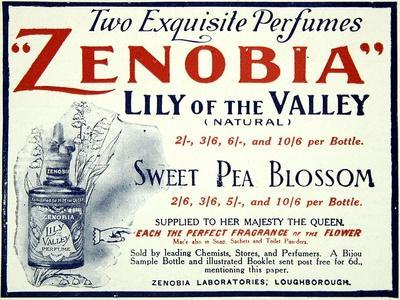 Zenobia Perfumes--Stretched Canvas Print