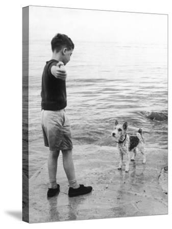 A Boy Throws Stones into the Sea for His Dog to Retrieve: the Dog Looks Up Expectantly-Henry Grant-Stretched Canvas Print