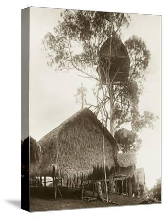 A Fantastic Treehouse at Ekiti Village, Sogeri, Papua New Guinea--Stretched Canvas Print