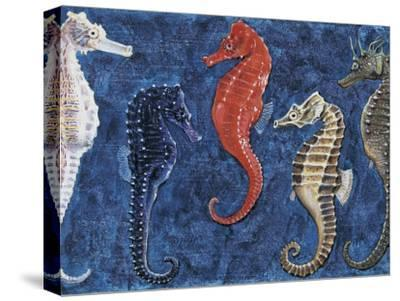 Close-Up of Five Seahorses Side by Side (Hippocampus Guttulatus)--Stretched Canvas Print