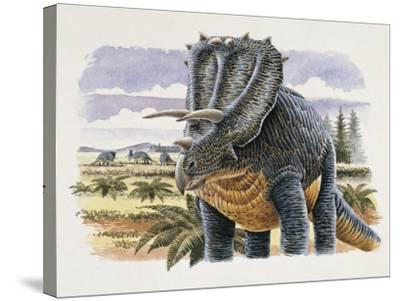 Four Dinosaurs in Landscape--Stretched Canvas Print