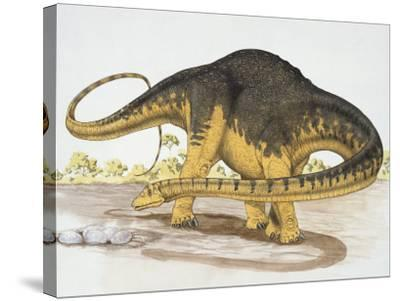 Dinosaur Standing on a Landscape--Stretched Canvas Print