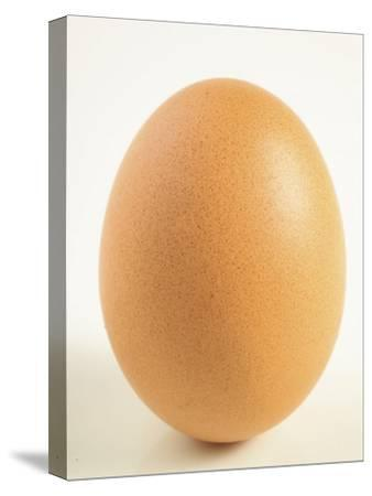 Close-Up of a Brown Egg--Stretched Canvas Print