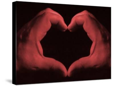 My Heart in My Hands--Stretched Canvas Print