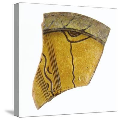 Fragment d'une aile de coupe--Stretched Canvas Print