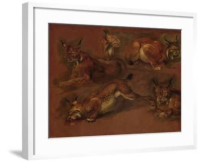 cinq lynx-Pieter Boel-Framed Giclee Print