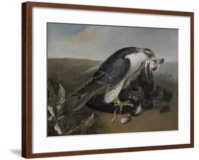 Faucon dévorant un oiseau.-Nicasius Bernaerts-Framed Giclee Print