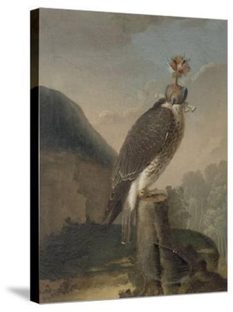 Faucon chaperonné.-Nicasius Bernaerts-Stretched Canvas Print