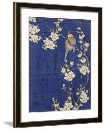 Bouvreuil et cerisier pleureur en fleur-Katsushika Hokusai-Framed Giclee Print