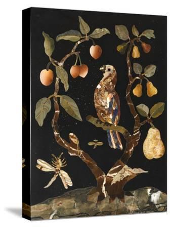 Panneau : Fruits et oiseaux--Stretched Canvas Print