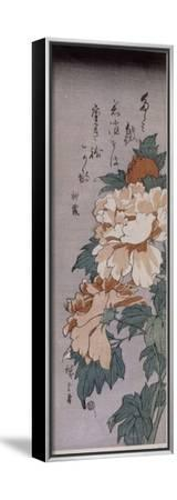 Pivoines-Ando Hiroshige-Framed Stretched Canvas Print