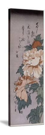 Pivoines-Ando Hiroshige-Stretched Canvas Print
