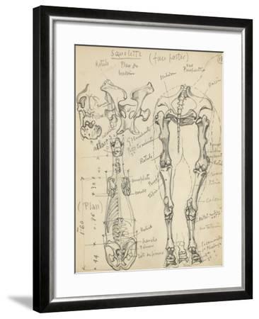 Squelette de cheval-Eug?ne Samuel Grasset-Framed Giclee Print